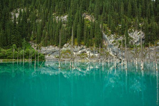 Sunken Forest, Kaindy Lake, Kazakhstan, photo 7