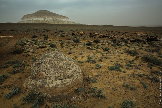 Alien landscapes around Mount Shergala, Kazakhstan, photo 2