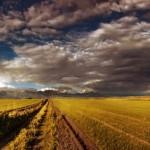 Classic steppe landscape of Kazakhstan