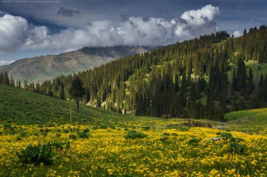 Tekes, Almaty region, Kazakhstan, photo 2