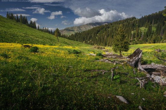Tekes, Almaty region, Kazakhstan, photo 3