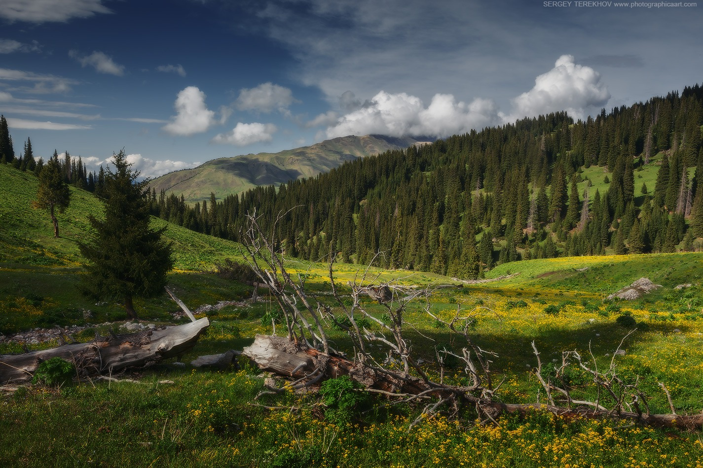 Scenic landscape near Tekes village · Kazakhstan travel ...