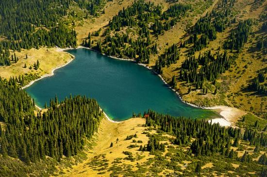 All the colors of Kazakhstan autumn, photo 3