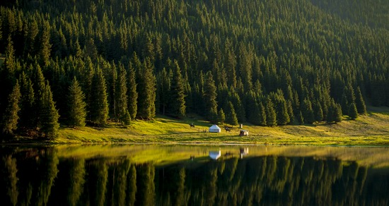 All the colors of Kazakhstan autumn, photo 8