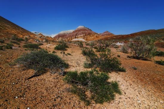 Clay mountains, Altyn Emel park, Kazakhstan, photo 5