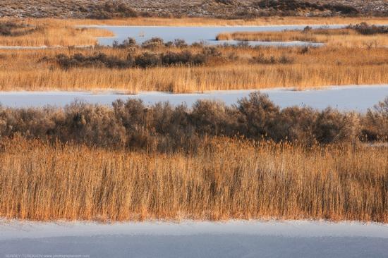 Saryesik-Atyrau desert, Kazakhstan, photo 5