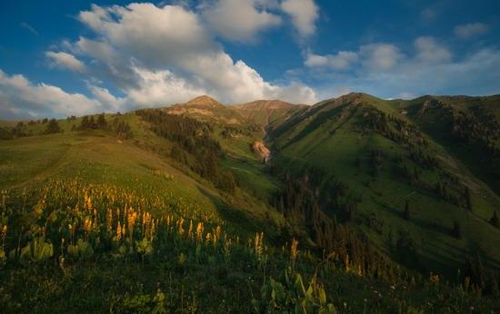 Kim-Asar Valley, Almaty region, Kazakhstan, photo 3