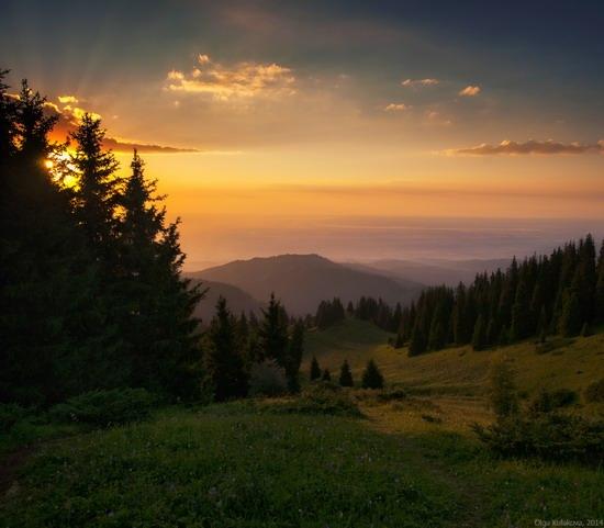 Kim-Asar Valley, Almaty region, Kazakhstan, photo 5