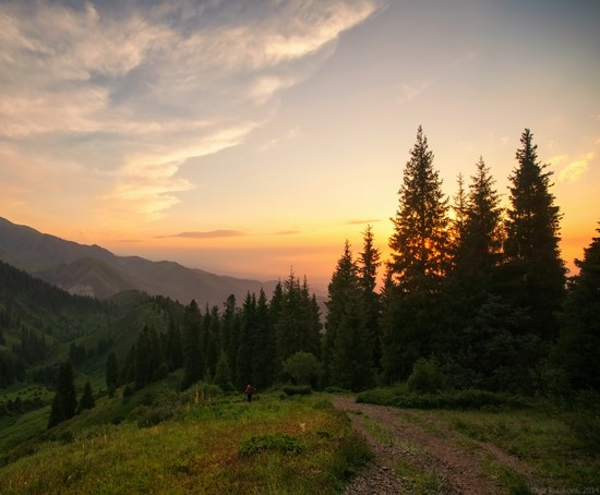 Kim-Asar Valley, Almaty region, Kazakhstan, photo 7