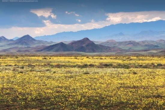 Toraigyr steppe mountains, Almaty region, Kazakhstan, photo 1