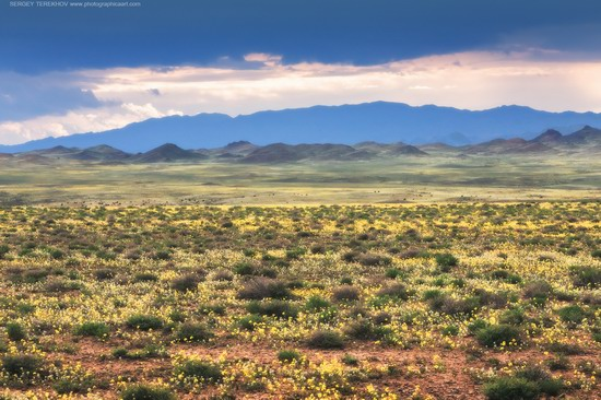 Toraigyr steppe mountains, Almaty region, Kazakhstan, photo 6