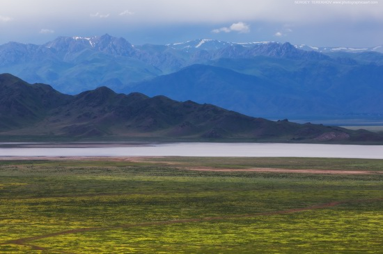 Lake Tuzkol landscapes, Kazakhstan, photo 6
