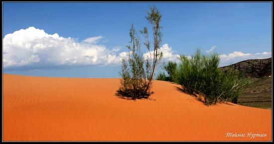 Altyn-Emel National Park, Kazakhstan, photo 4