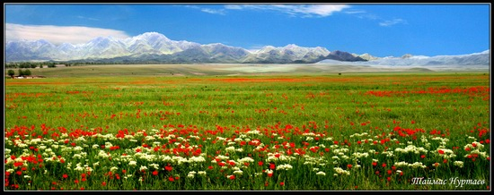 Altyn-Emel National Park, Kazakhstan, photo 9
