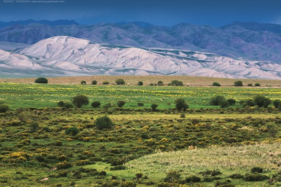 The tract of Atzhal and the Aybyrzhal Mountains, Kazakhstan, photo 10