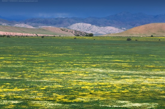 The tract of Atzhal and the Aybyrzhal Mountains, Kazakhstan, photo 5