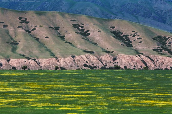 The tract of Atzhal and the Aybyrzhal Mountains, Kazakhstan, photo 6