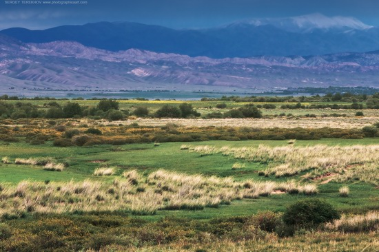 The tract of Atzhal and the Aybyrzhal Mountains, Kazakhstan, photo 8