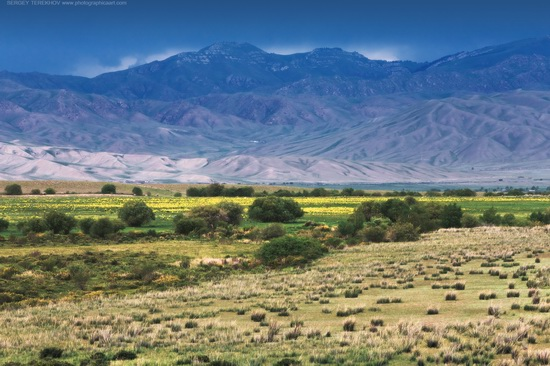 The tract of Atzhal and the Aybyrzhal Mountains, Kazakhstan, photo 9