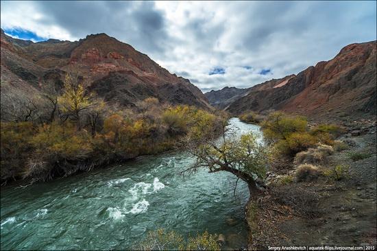 Grand Canyon in Kazakhstan, photo 21
