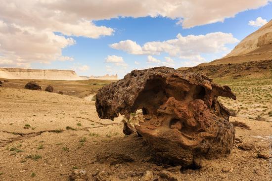 One day on Boszhira Tract, Kazakhstan, photo 10
