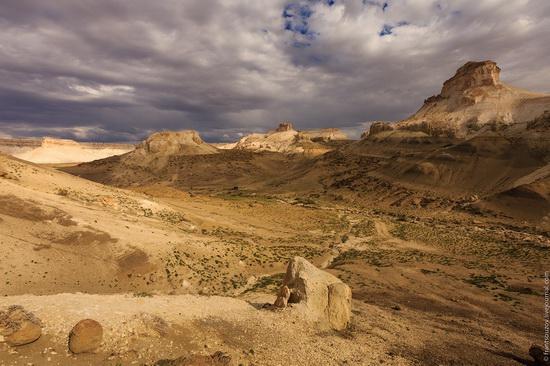 One day on Boszhira Tract, Kazakhstan, photo 15
