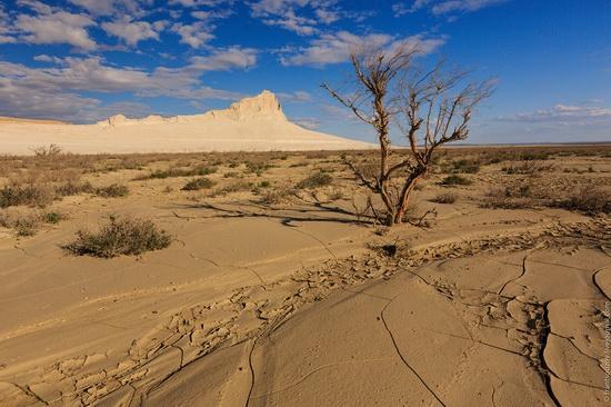 One day on Boszhira Tract, Kazakhstan, photo 19