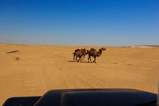 Senek sands, Mangystau region, Kazakhstan, photo 2