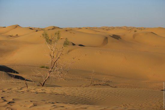 Senek sands, Mangystau region, Kazakhstan, photo 8