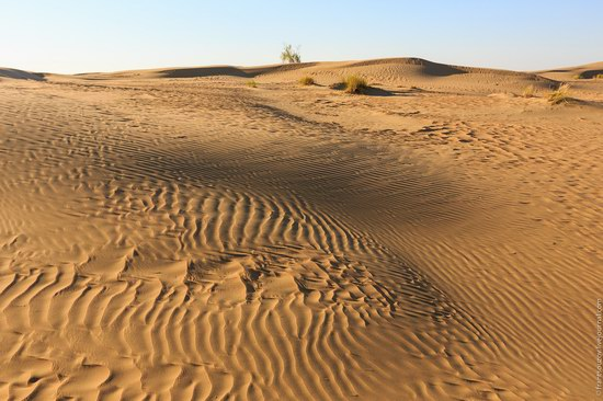 Senek sands, Mangystau region, Kazakhstan, photo 9