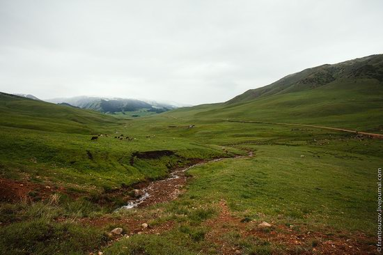Snowy summer on Assy-Turgen mountain plateau, Kazakhstan, photo 11