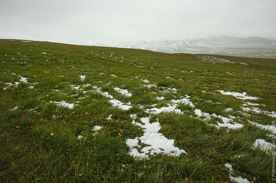 Snowy summer on Assy-Turgen mountain plateau, Kazakhstan, photo 16