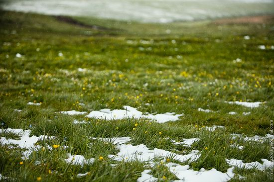 Snowy summer on Assy-Turgen mountain plateau, Kazakhstan, photo 20
