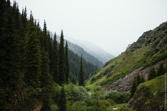 Snowy summer on Assy-Turgen mountain plateau, Kazakhstan, photo 25