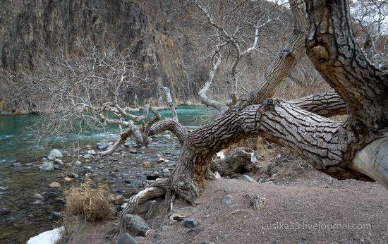 Charyn Canyon in the cold season, Almaty region, Kazakhstan, photo 11