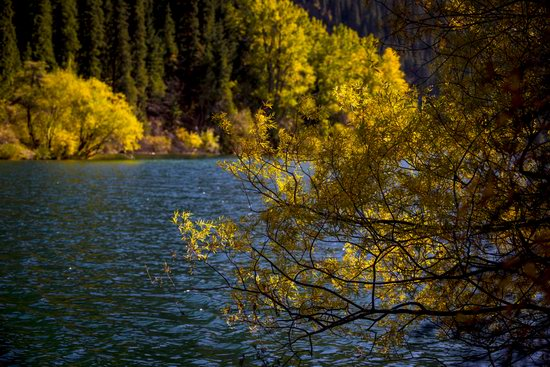 Golden Autumn on Kolsai Lakes, Kazakhstan, photo 13