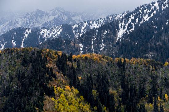 Golden Autumn on Kolsai Lakes, Kazakhstan, photo 14