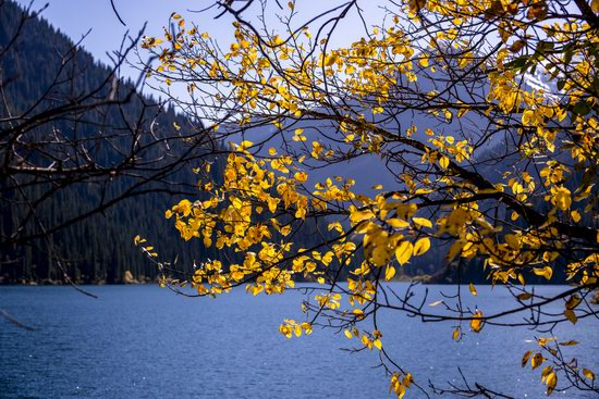 Golden Autumn on Kolsai Lakes, Kazakhstan, photo 5
