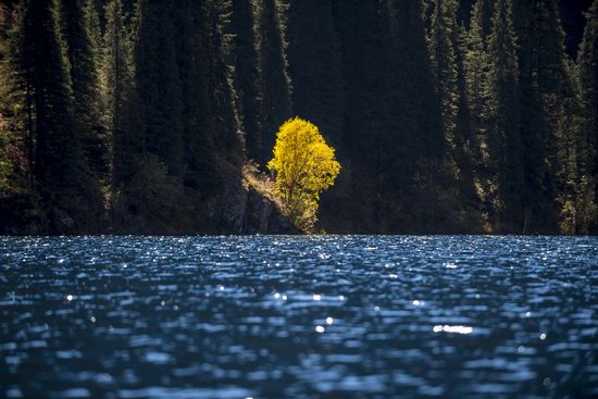 Golden Autumn on Kolsai Lakes, Kazakhstan, photo 8