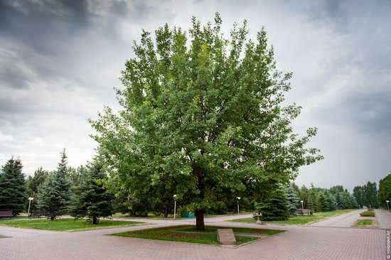 Park of the First President of Kazakhstan, Almaty, photo 14