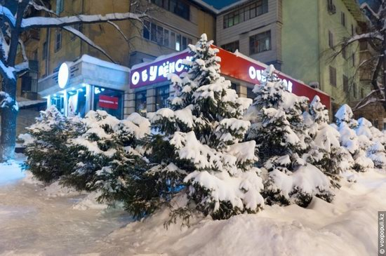Almaty after heavy snowfall, Kazakhstan, photo 17