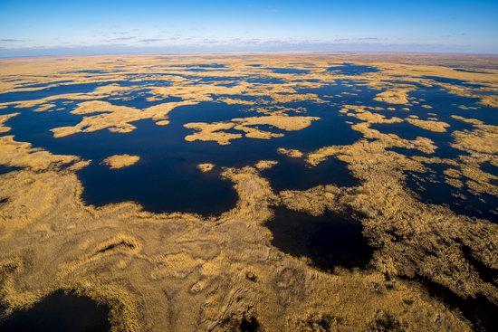 Autumn in the delta of the Ili River, Kazakhstan, photo 5
