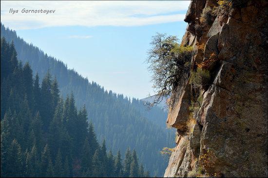 Hiking in Butakovskoe Gorge, Almaty, Kazakhstan, photo 12
