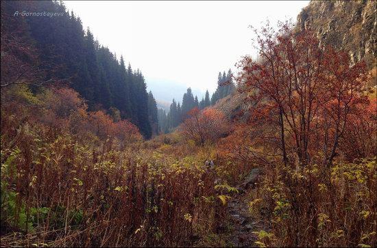 Hiking in Butakovskoe Gorge, Almaty, Kazakhstan, photo 16