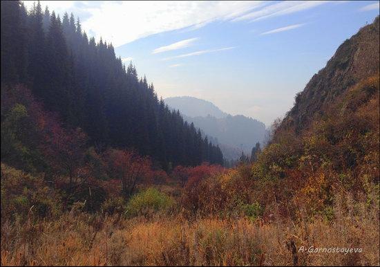 Hiking in Butakovskoe Gorge, Almaty, Kazakhstan, photo 17