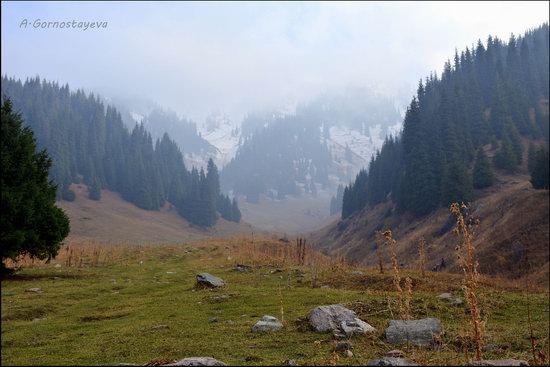 Hiking in Butakovskoe Gorge, Almaty, Kazakhstan, photo 18