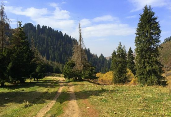 Hiking in Butakovskoe Gorge, Almaty, Kazakhstan, photo 23