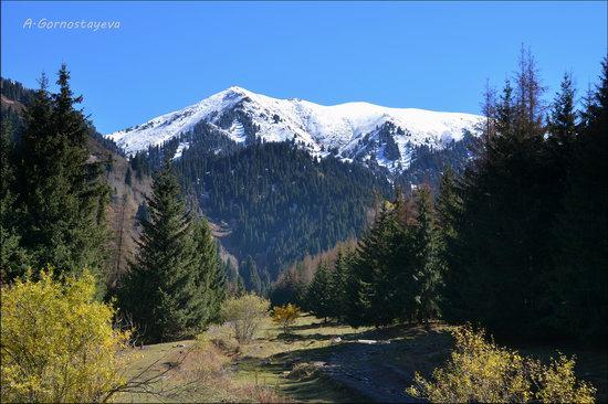 Hiking in Butakovskoe Gorge, Almaty, Kazakhstan, photo 5