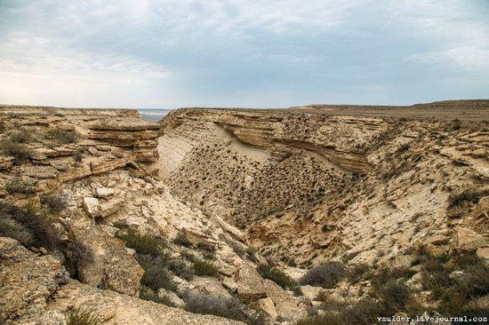 Amazing Landscapes of the Ustyurt Plateau, Mangystau region, Kazakhstan, photo 10