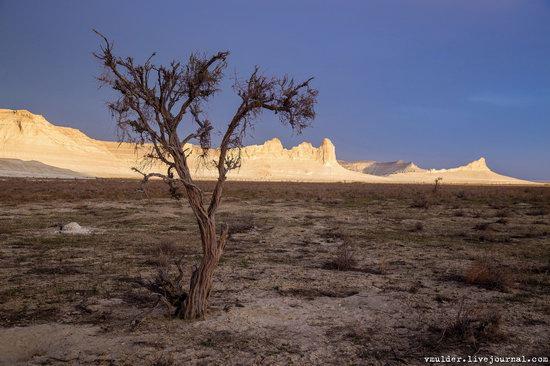 Amazing Landscapes of the Ustyurt Plateau, Mangystau region, Kazakhstan, photo 23
